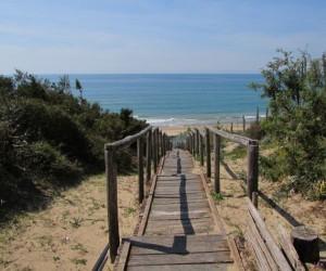 passerella sabaudia 300x250 - Sabaudia, spiaggia accessibile ai cani. Ma non ai disabili
