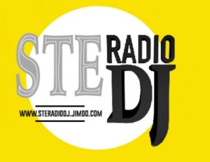 steradiodj italiaccessibile 520x4001 300x231 - Radio Partner ItaliAccessibile
