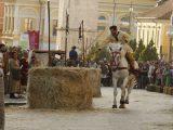 benevento longobarda 2015 160x120 - A Verona l'evento il 25 aprile Liberazione dalle Barriere
