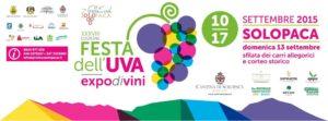 Festa del'Uva di Solopaca (Bn) accessibile a persone con disabilità