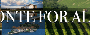 piemonte for all 300x117 - piemonte-for-all