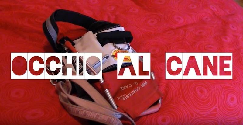 Video Occhio al Cane - BlindSight project Onlus