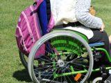 buona scuola disabili 160x120 - Dora una Voce per un Aiuto - Puntata del 29 gennaio 2017
